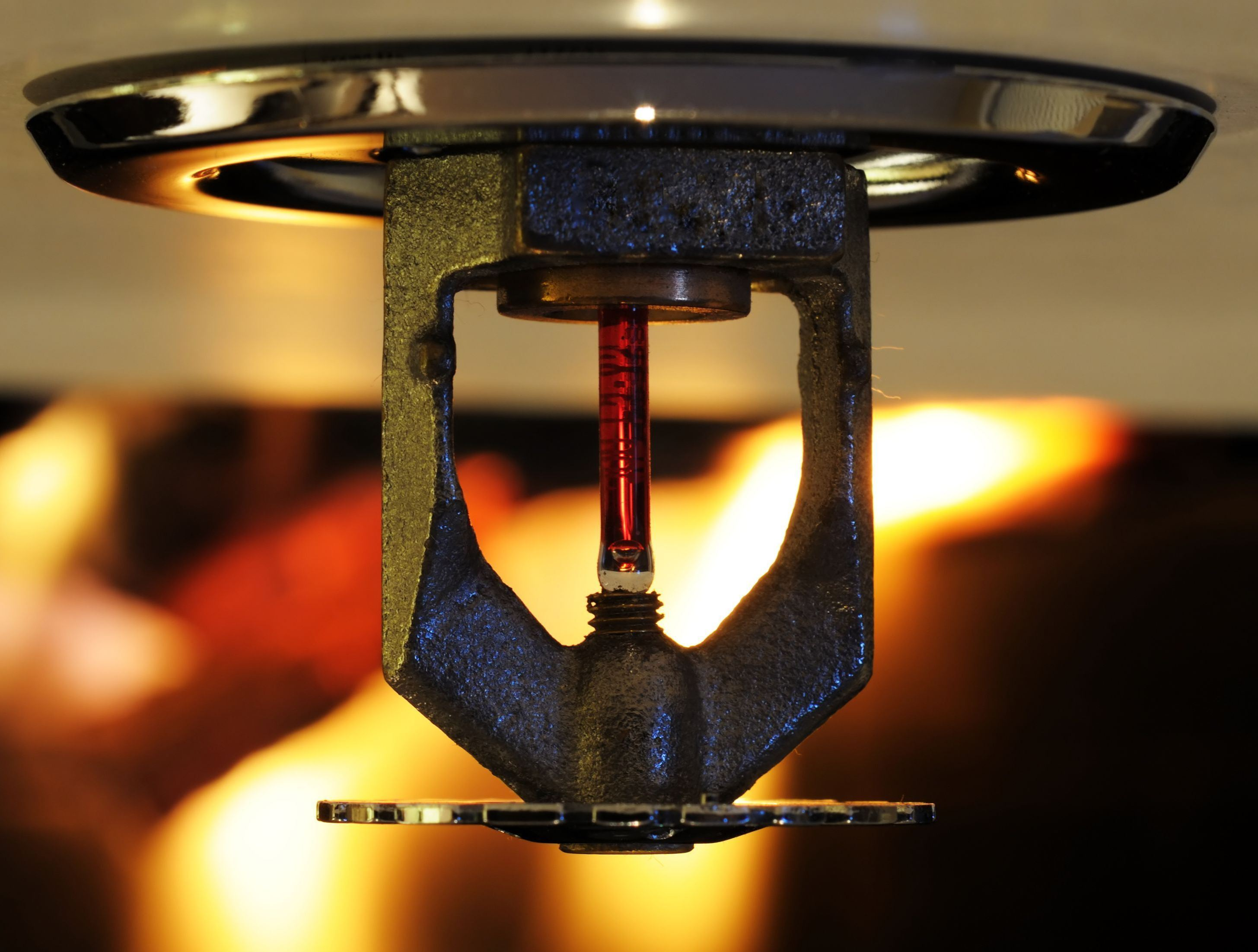 Fire Sprinkler Safety Services Toronto